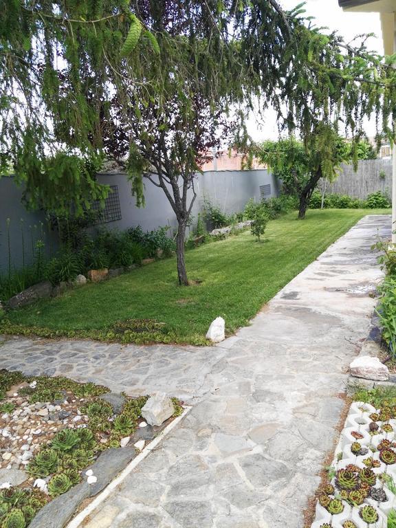 Jardin 06